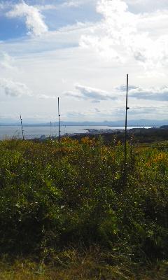 琵琶湖を見渡す畑へ