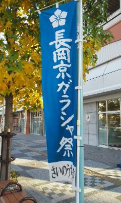 長岡京市の筍畑