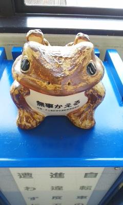南彦根の無事カエル