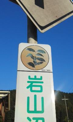 宇治田原町で生物調査