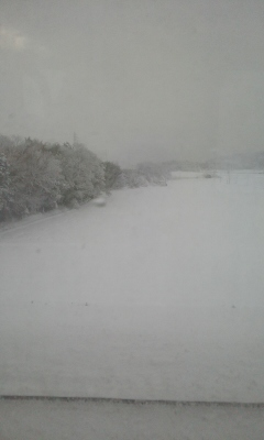 一日中 雪の日