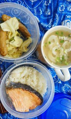焼き鮭弁当とお花見弁当