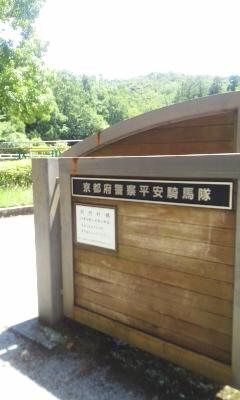 宝ヶ池公園
