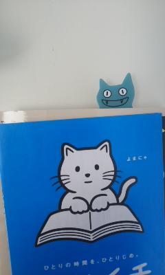 いただきもの猫シリーズ