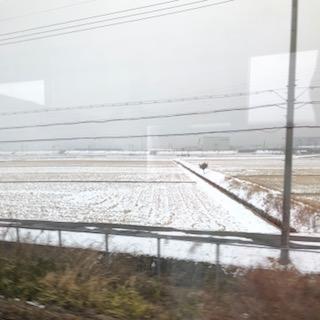 今朝の琵琶湖線の雪