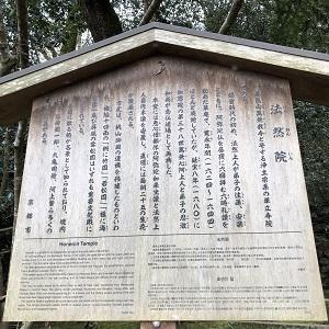 京都観光を敢行