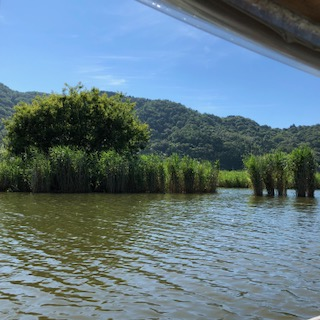 近江八幡市 水郷の郷まるやまの手漕ぎの舟