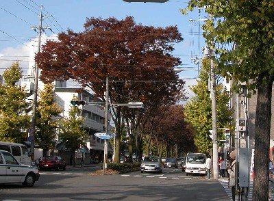2005-11-24-sirakawadori