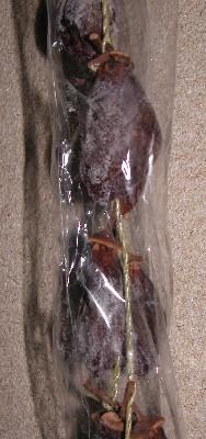 2005-12-30-hosigaki