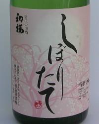 2005-5-hatusakura