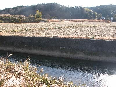 2006-1-7-inaka