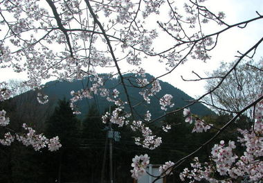 2008412omihiji