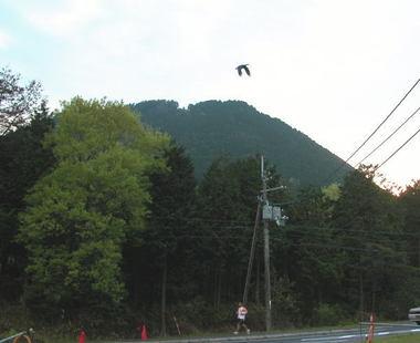 2008426ofuji2kara_2