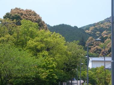 2008516ostuyama