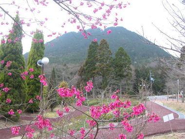 2009322ohikanzakural