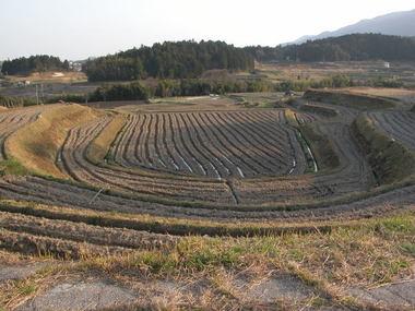 200549satoyama2batei